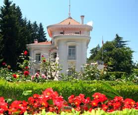 Karadeniz Yaylalar ve Batum Turu