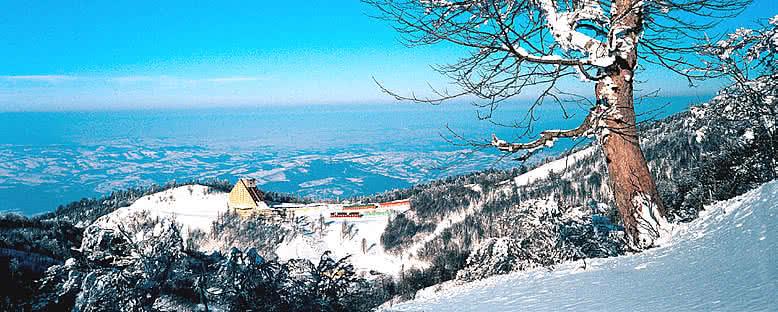 Dağ Manzarası - Kartepe