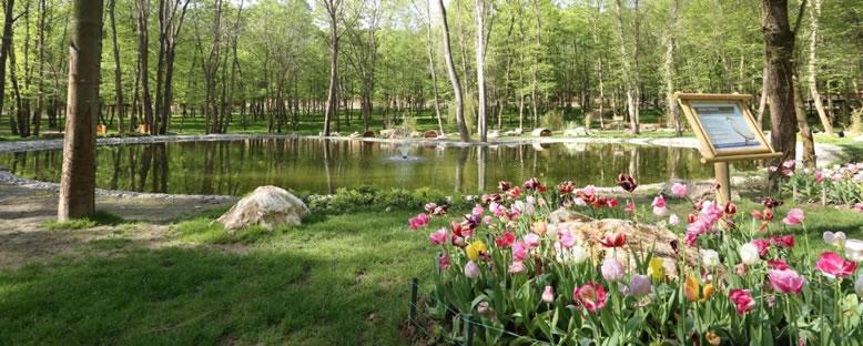 Tabiat Bahçesi - Ormanya
